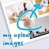 My upload images : メディアアップローダー付きのカスタムフィールドを設置するプラグイン。 - thumbnail
